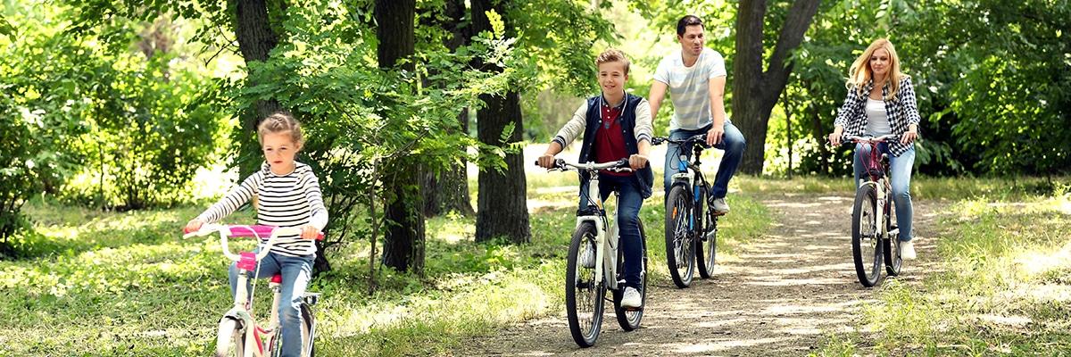 Wypożyczalnia rowerów Miodowy Młyn